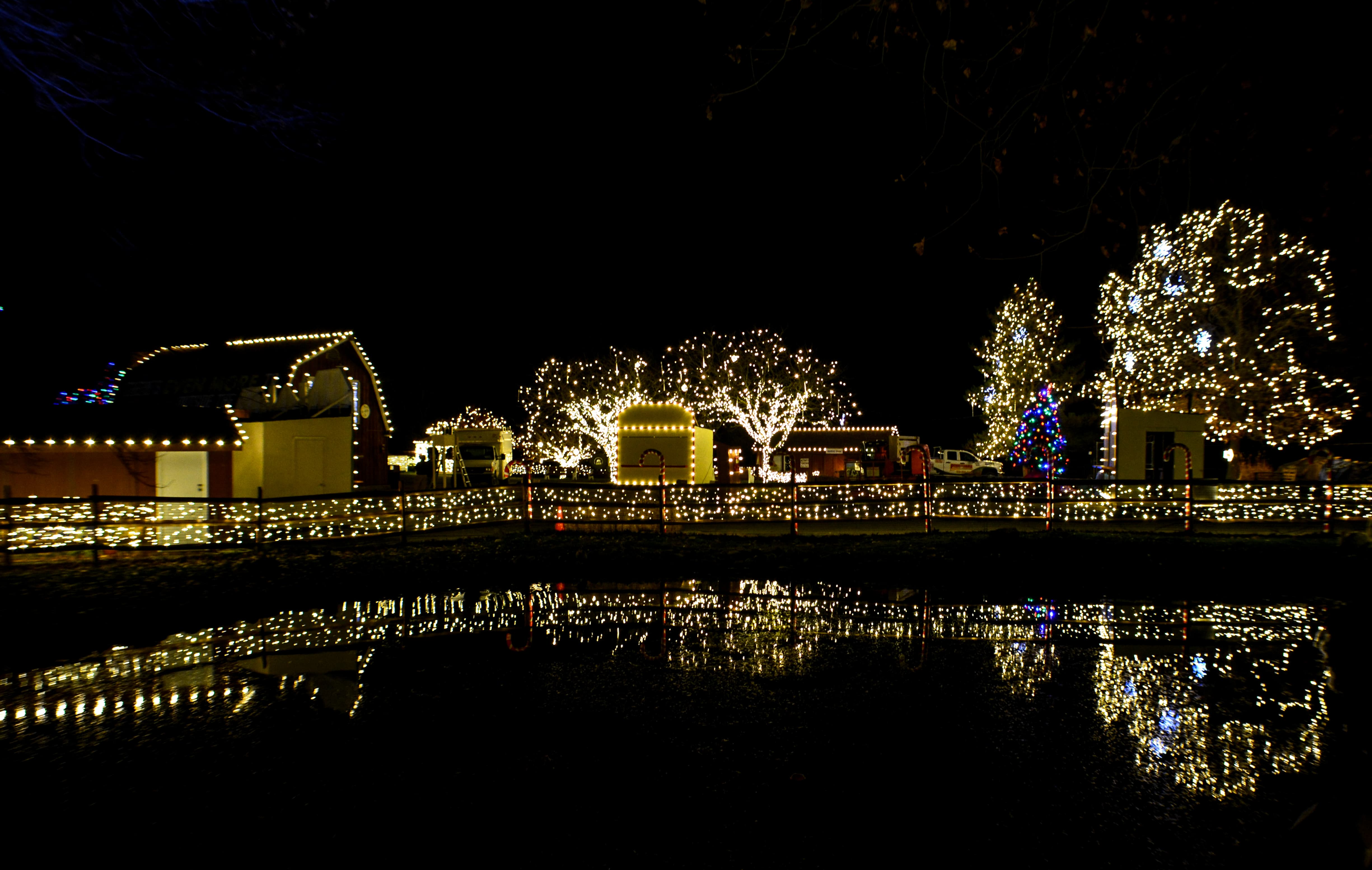 Coupons for lights at the lehigh valley zoo