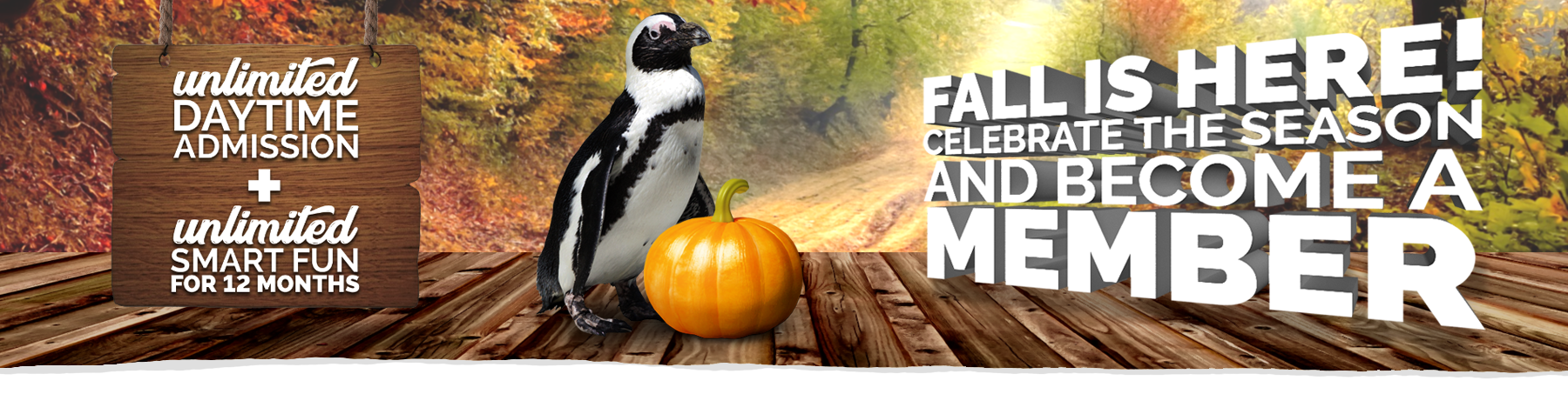 Join the Zoo: Enjoy Free Daytime Admission All Year Long