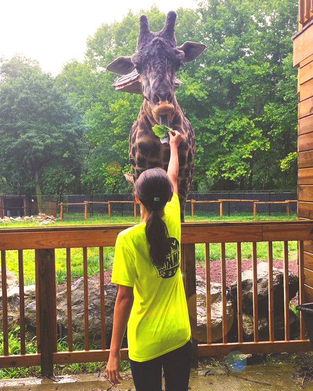 de6d085a3259 Lehigh Valley Zoo invites campers for an exciting week of nature discovery