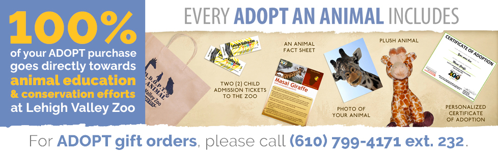 100% of your ADOPT purchase goes directly towards animal education & conservation efforts at Lehigh Valley Zoo. Every ADOPT An Animal package includes two child admission tickets, an animal fact sheet, a photo of your animal, a plush of your animal, and a personalized certificate of adoption. For ADOPT gift orders, please call 610-799-4171 extension 232.